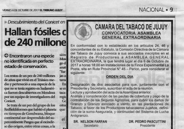 Cámara del Tabaco de Jujuy.  Convocatoria Asamblea General  Extraordinaria